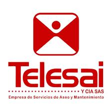 Telesai y Cia SAS