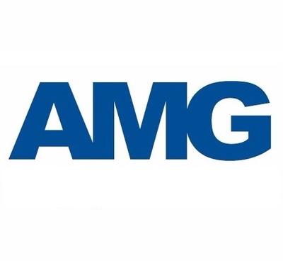 Servicio doméstico AMG