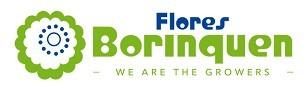 FLORES BORINQUEN SAS